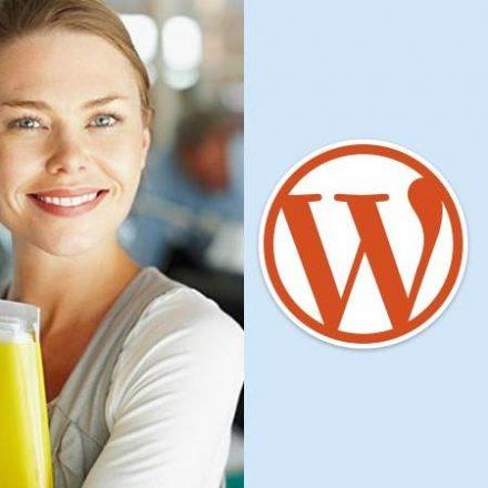 Cursus WordPress-website maken in 1 dag - individueel